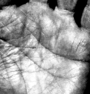 Branje prihodnosti z dlani
